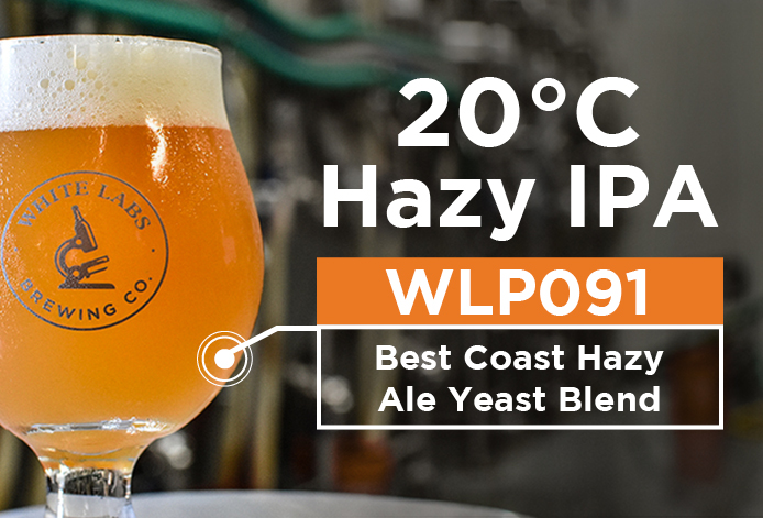 Beer data sheet image