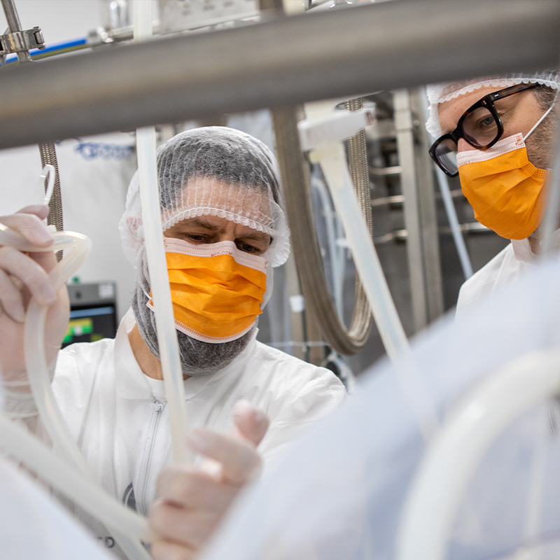 Image of workers in yeast factory