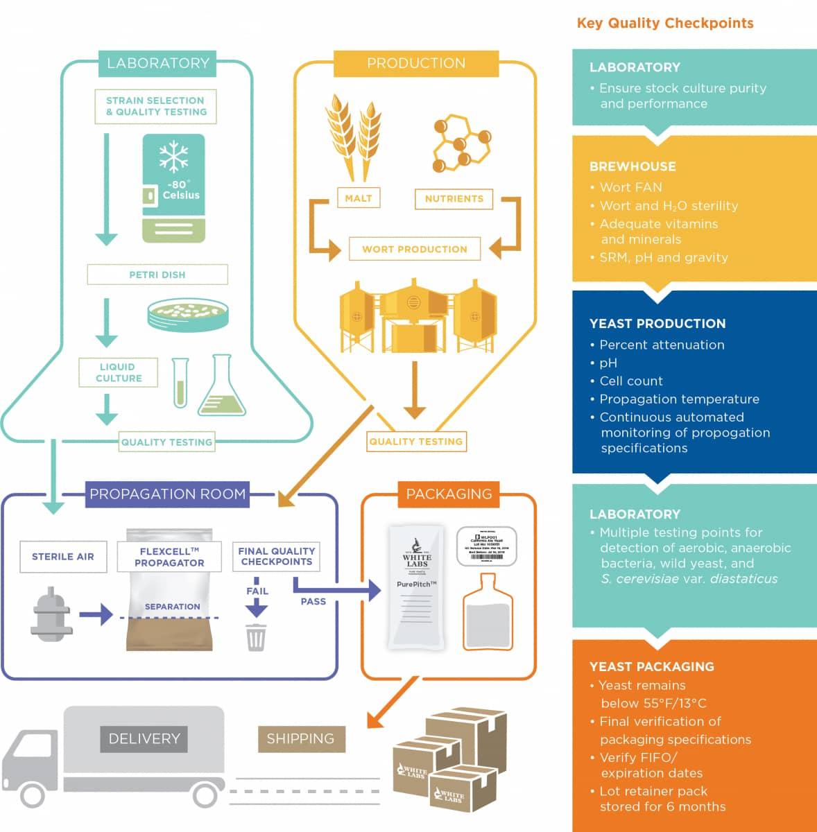 White Labs Yeast Propagation Process
